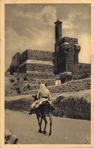 384px-PikiWiki_Israel_4803_Tower_of_David_1925