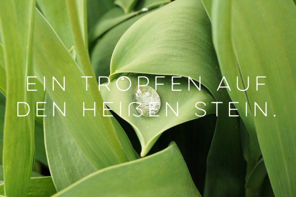 german_idioms_1